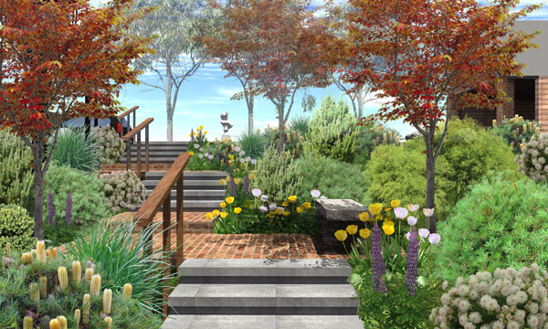 Back Yard & Front Yard Garden Design